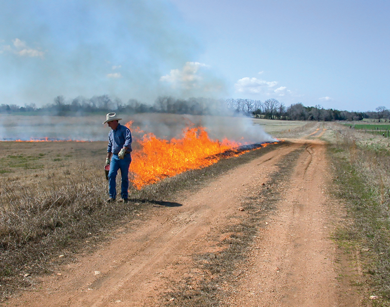 Controlled burning,