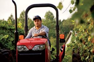 Vineyard manager Carlos Munguia is impressed with the maneuverability of the MF2615.