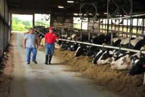 Birchen with son Adam in their dairy.