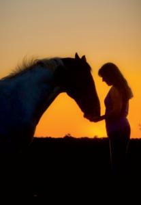 Dee Doolittle runs Mitchell Farm Equine, a horse retirement facility near Salem, Conn. Her farm at sunset made a beautiful setting, and she got her horse in a perfect (and very still) pose for the low-light cover photo of the Winter 2012 issue, shot by FarmLife Creative Director Jamie Cole.