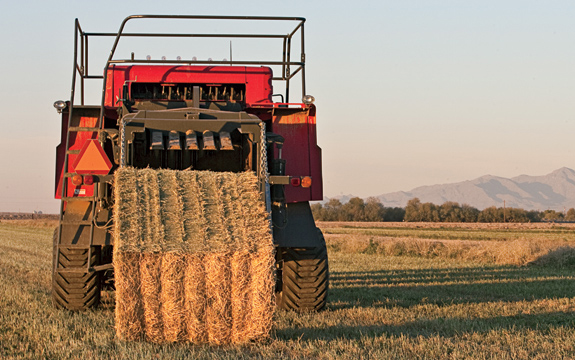 Baling Tips for Quality Hay | myFarmLife com