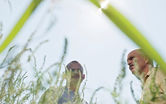 Jason and Jim Sneed, among the ragweed.