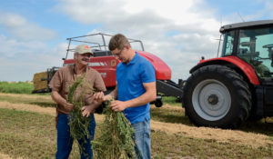 The Perfect Combination: Hesston Balers and Massey Ferguson