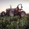 The Massey Ferguson MF4610M Tractor in High-Clearance