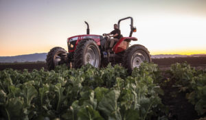 Go High or Go Low With The Massey Ferguson MF4610M Tractor