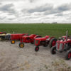 A few of Brian Ussary's restored Massey Ferguson vintage tractors.