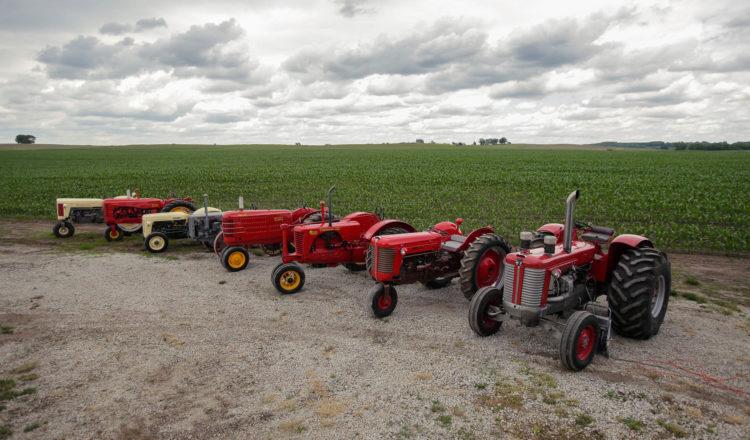 A few of Brian Ussary's restored Massey Ferguson vintage tractors.