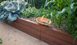 Top Tips on Gardening in Raised Beds