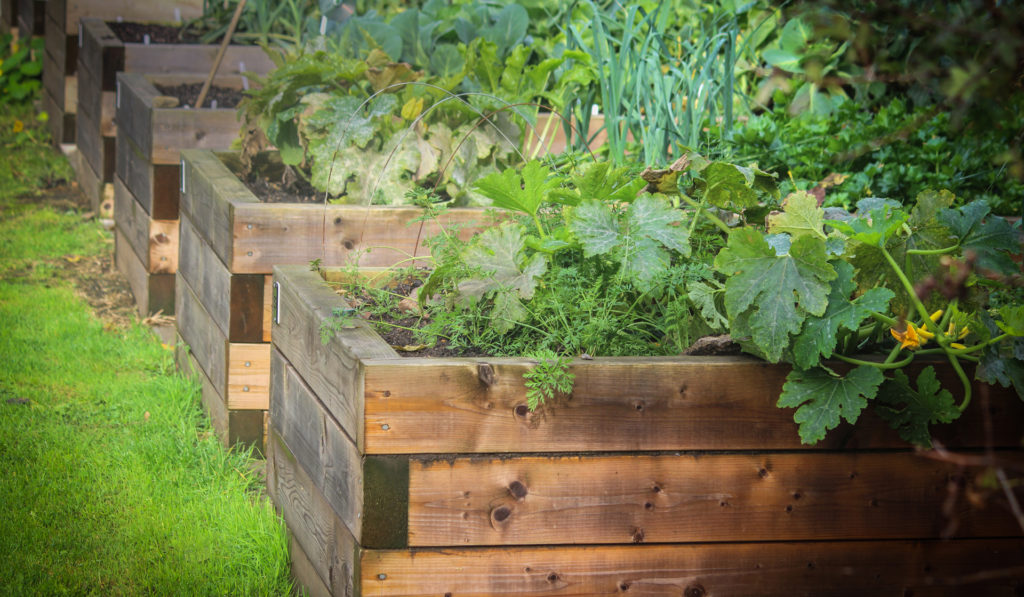 As A Raised Bed Gardener Living In An Area With Cool Or Even Downright Frigid Winters You Easily Can Extend Your Garden Harvest Into The Cold Weather