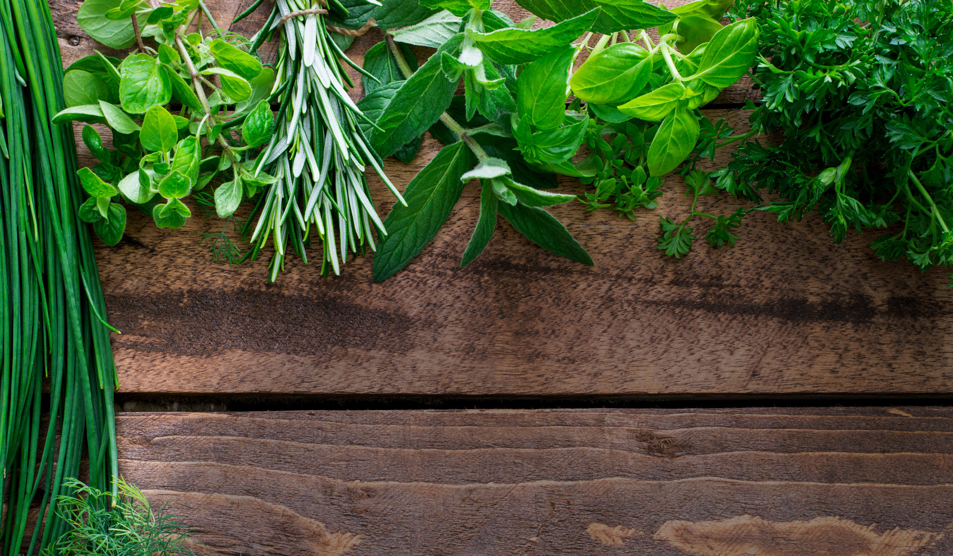 Fresh herbs are easy to grow and enhance any dish.