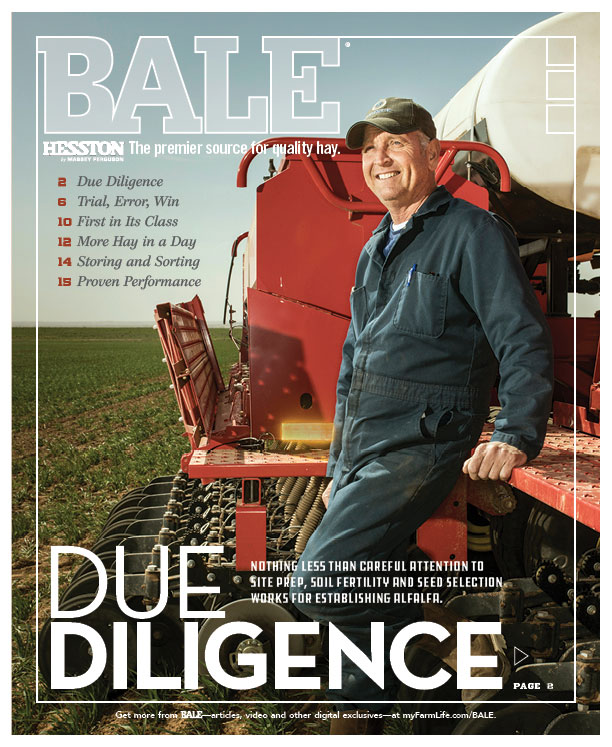 Browse the Summer 2018 Issue of BALE