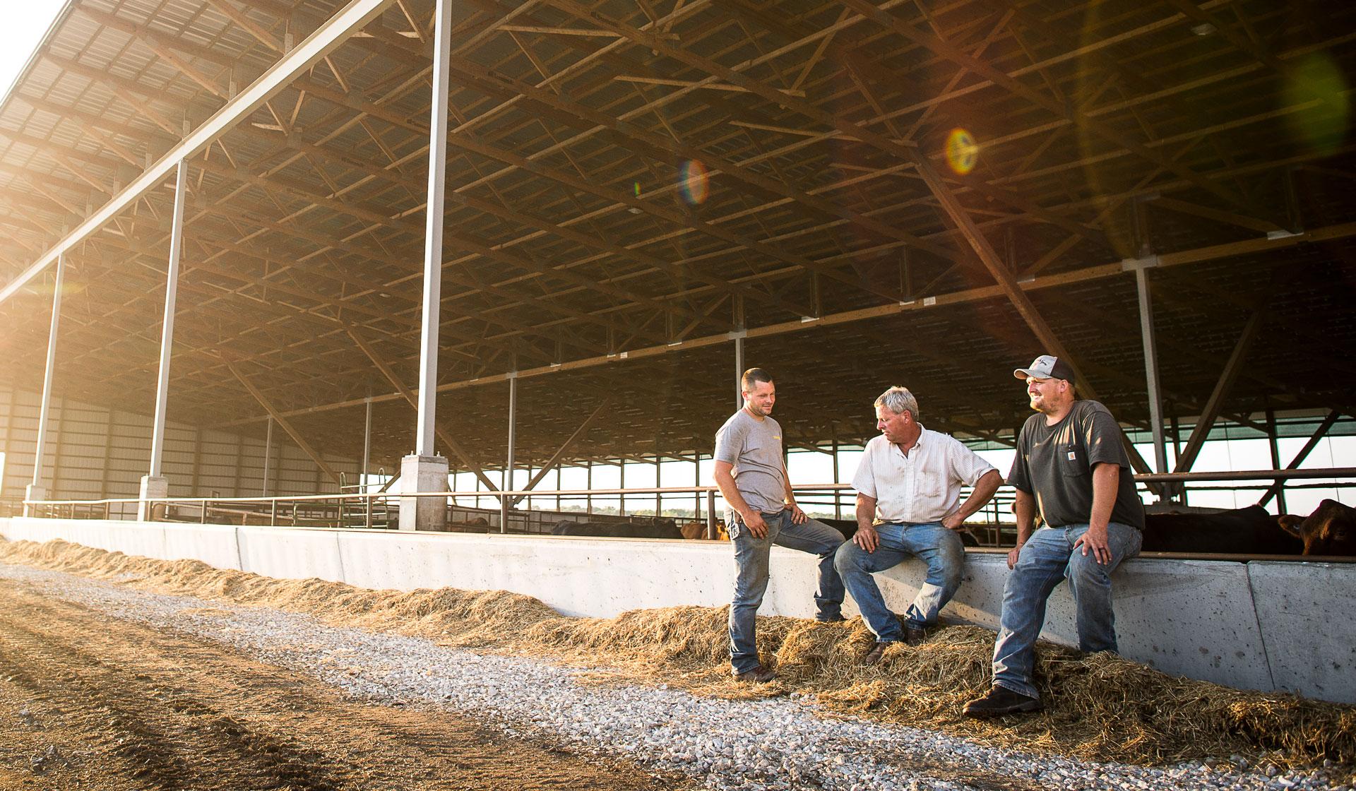 The All-In Livestock Barn | myFarmLife com