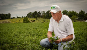 Southeastern Hay Contest Winner: First-Place Forage